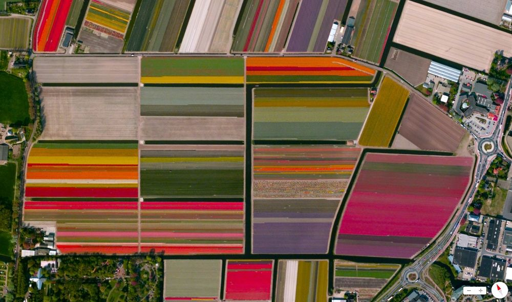 bird's eye view of tulip fields in lisse, netherlands - and other things. AWESOME.