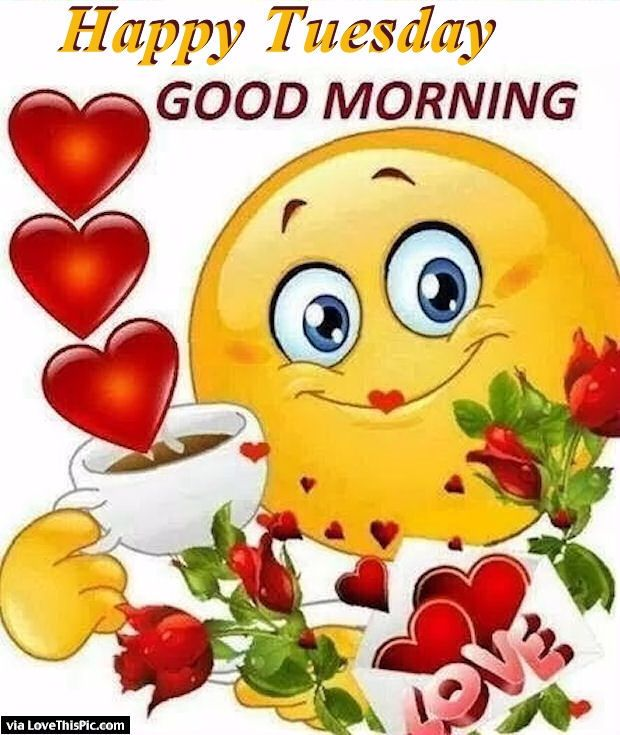 Good Morning My Love Cartoon Images : Cute happy tuesday good morning quote the word