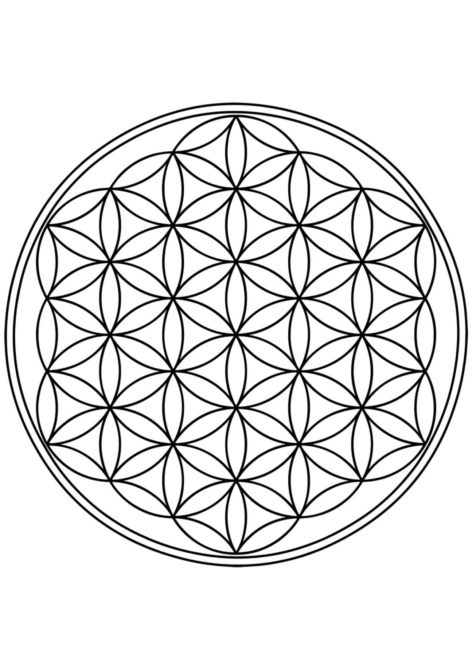 Flower of Life Printable Poster - Sacred Geometry print - Instant download - Flower of life print - Flower of Life Vector - Mandala print