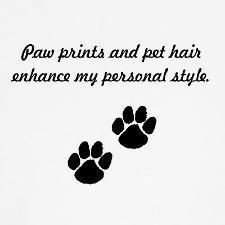 It adds texture to your outfit. I know this is a general quote but it so applies to pug parents. He!he!