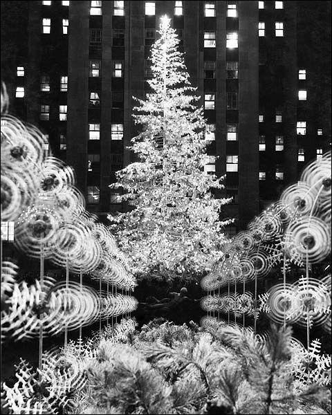 Christmas Tree In Ny: Rockefeller Center Christmas Tree, Circa 1950s