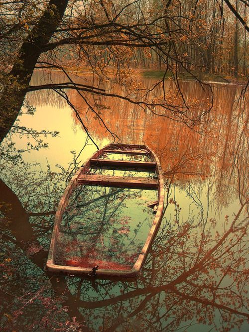 In the mirrored reflection sinking into the pool of tarnished rust how the forgotten, still holds beauty…{zb}