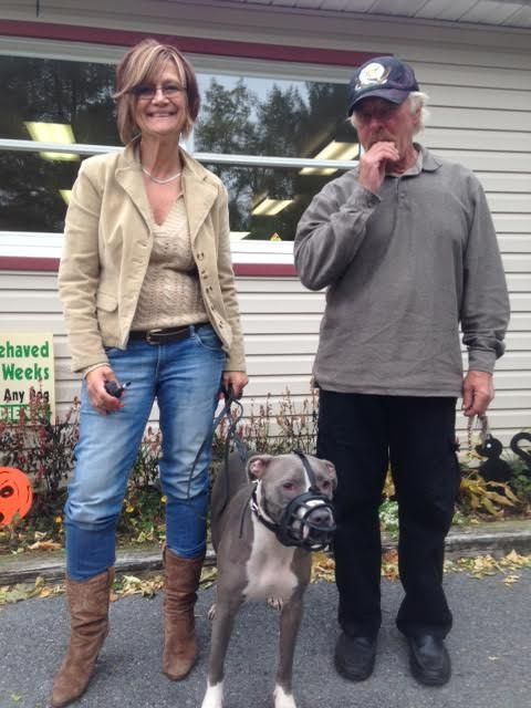 Charmaine And Mike With Their Dog Ivy Reading Pa Dog Training Dogs