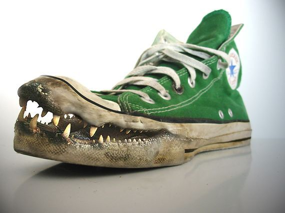 This is a pretty funny photo.  I like the fact that they used green as the shoe color.  Alligators are not green but whenever i see a drawing or picture of one it is usually portrayed as green.  Also, it looks like the shoe is dirty and thats where the alligator color is from.  Plus teeth on a shoe is pretty funny.