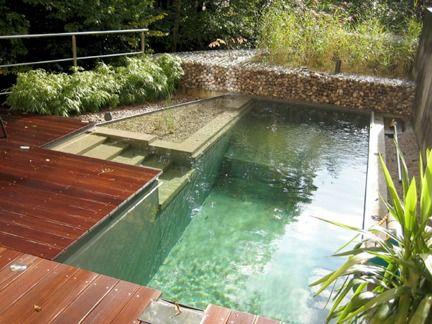10 Eco Friendly Natural Swimming Pools Natural Swimming Pools Swimming Pools And Natural