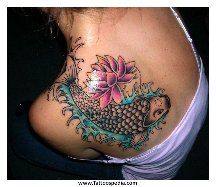 Koi fish tattoo designs might often include lotus flowers or koi fish tattoo designs might often include lotus flowers or japanese maple leaves in their look mightylinksfo