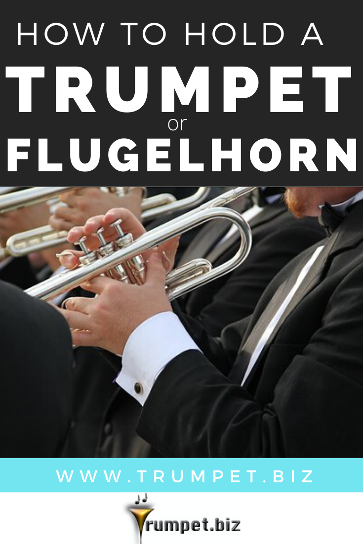 How To Hold A Trumpet Or Flugelhorn Trumpet Trumpet Mouthpiece Hold On