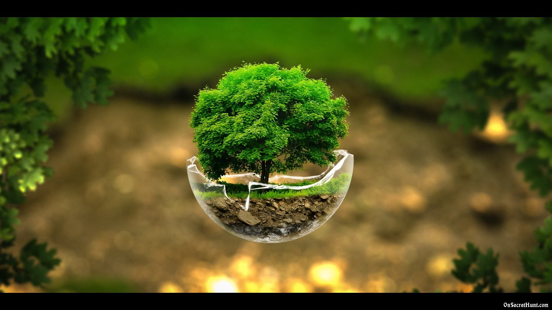 A World In A Grain Of Sand Beautiful Nature Wallpaper Nature