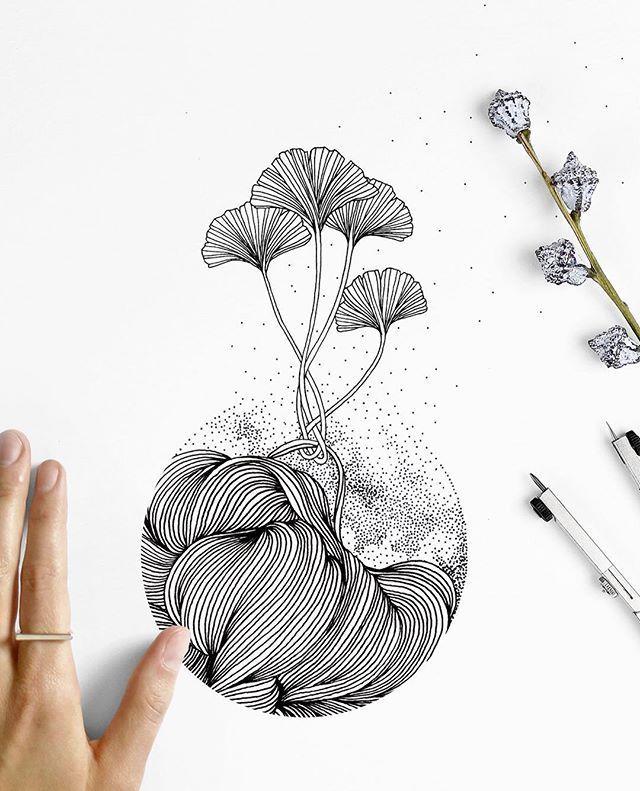 Line Drawing Method : Modern botanical line drawing method pinterest 그림