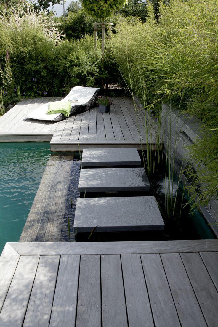 Schöner wohnen mit Schwimmteich