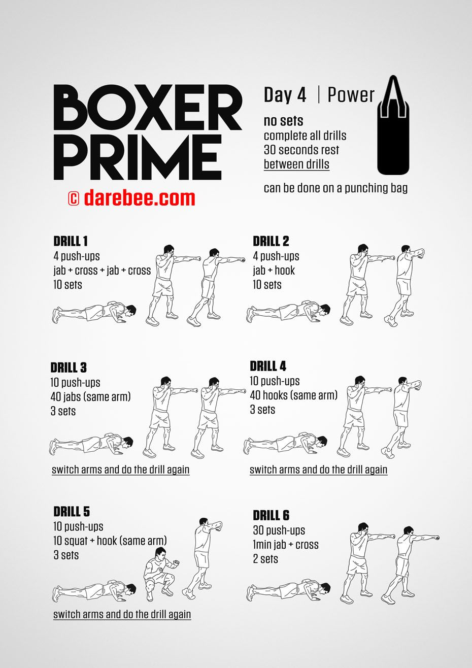 Boxer Prime 30 Day Fitness Program Training Pinterest Boxing
