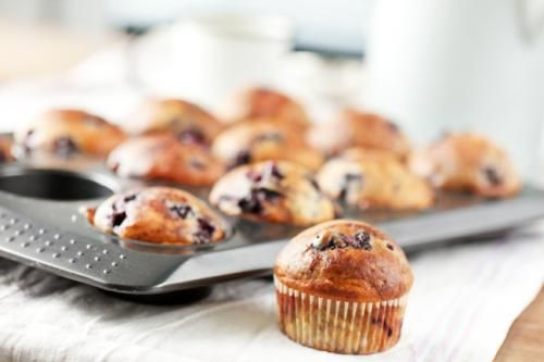 Basic blueberry muffins recipe blueberries muffins blueberry basic blueberry muffins recipe blueberries muffins blueberry and blueberry muffin recipes forumfinder Choice Image