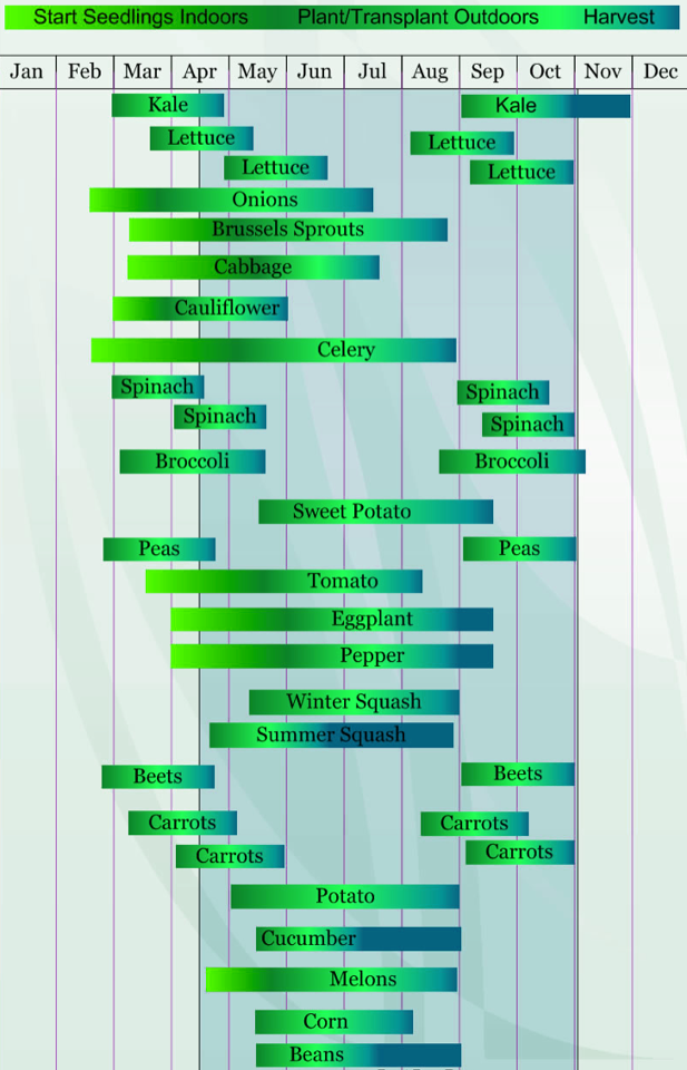Zone planting guide thinking about trying to grow something in sc also rh pinterest
