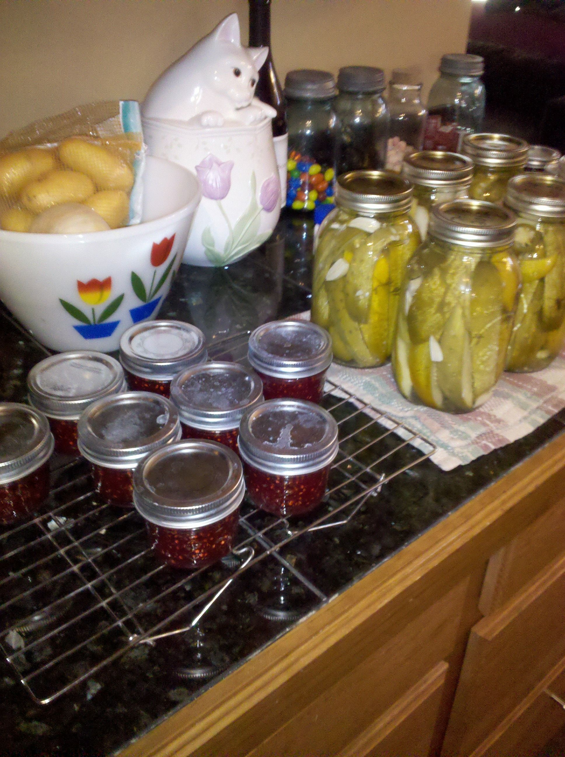 garlic jalepeno dill pickles and raspberry jam, all made from our garden goodies