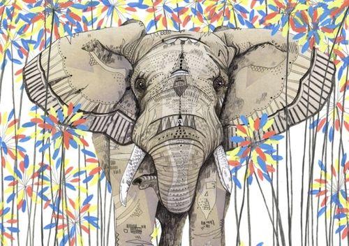 Tumblr Elephants Wallpapers Elephants wallpaper tumblr