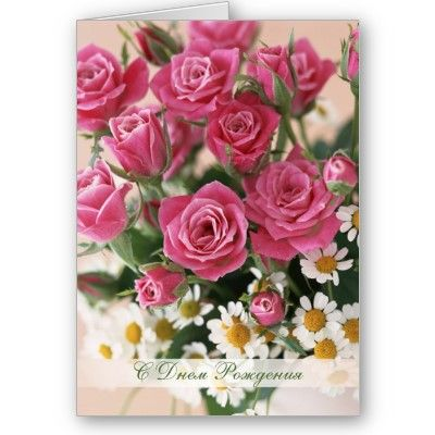 Russian Birthday Red Roses And Camomiles Greeting Card From Http