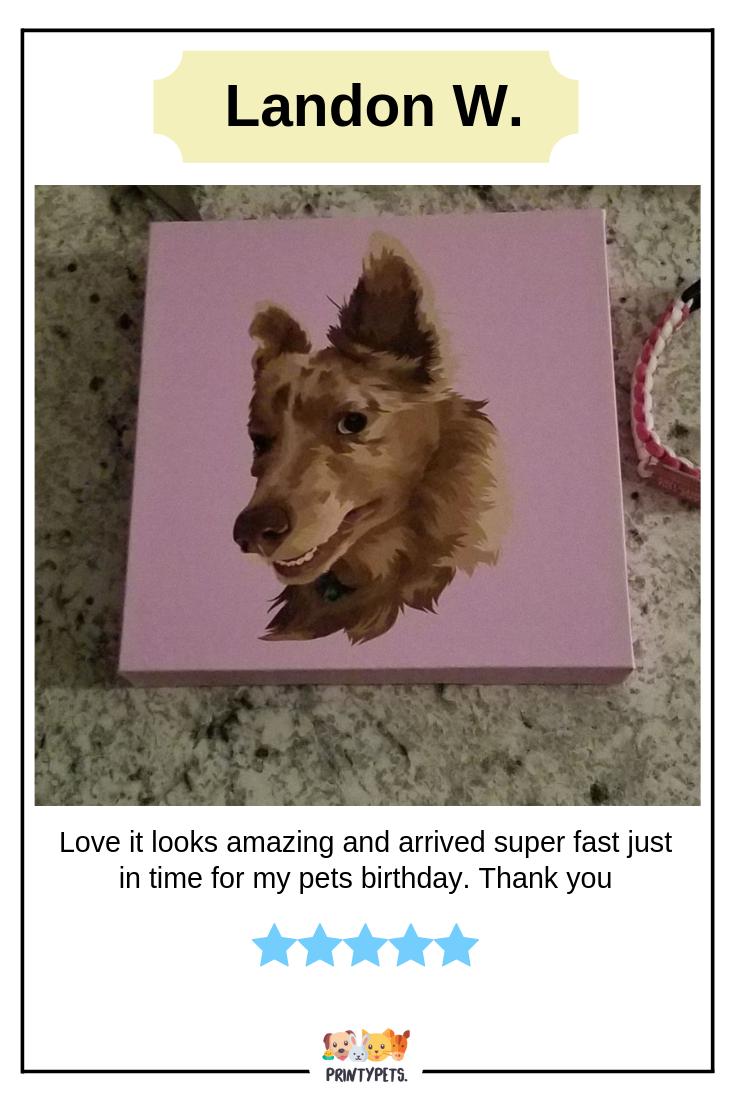 Customer Review From Landon W Petportrait Printypets Petlover Custom Pet Art Animal Lover Animal Birthday