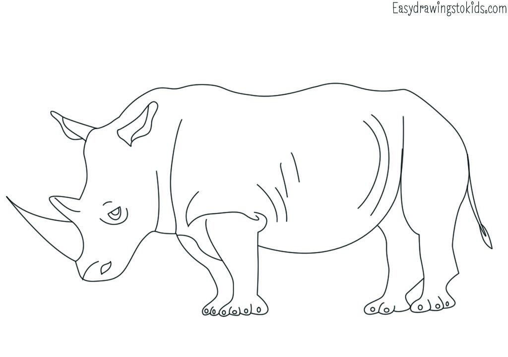 Rhino Drawing Animals Wild Animal Coloring Pages Animals