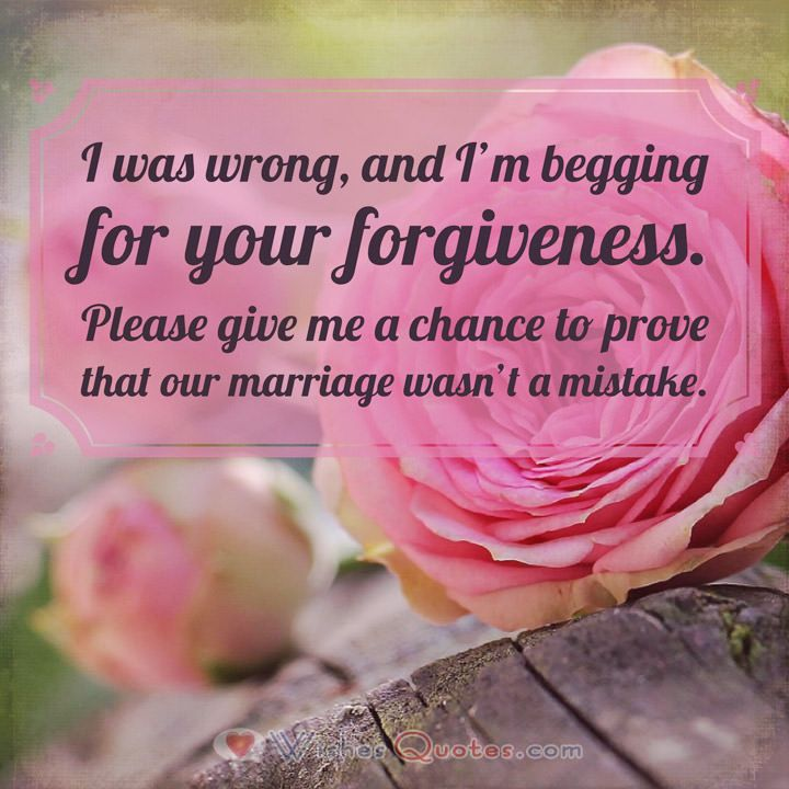 Apology Letters and Sorry Messages for your Wife Messages and - apology letters to customer
