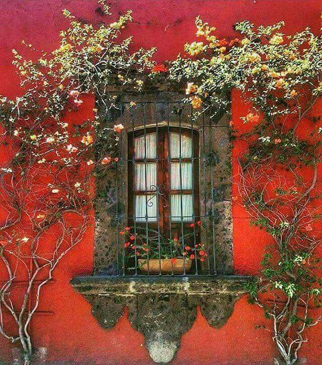 Stone surround window against a red orange wall with - Fioriere per davanzale finestra ...