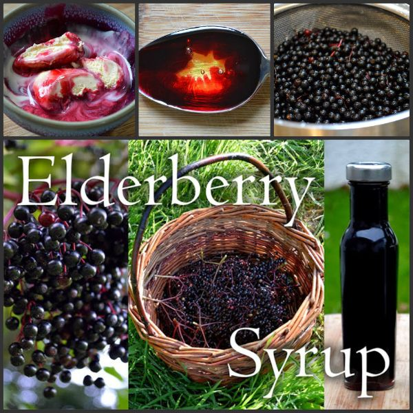 Make This Elderberry Syrup Recipe