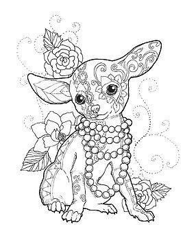Chihuahua Elegante Por Cindy Elsharouni Colorear Mandalas