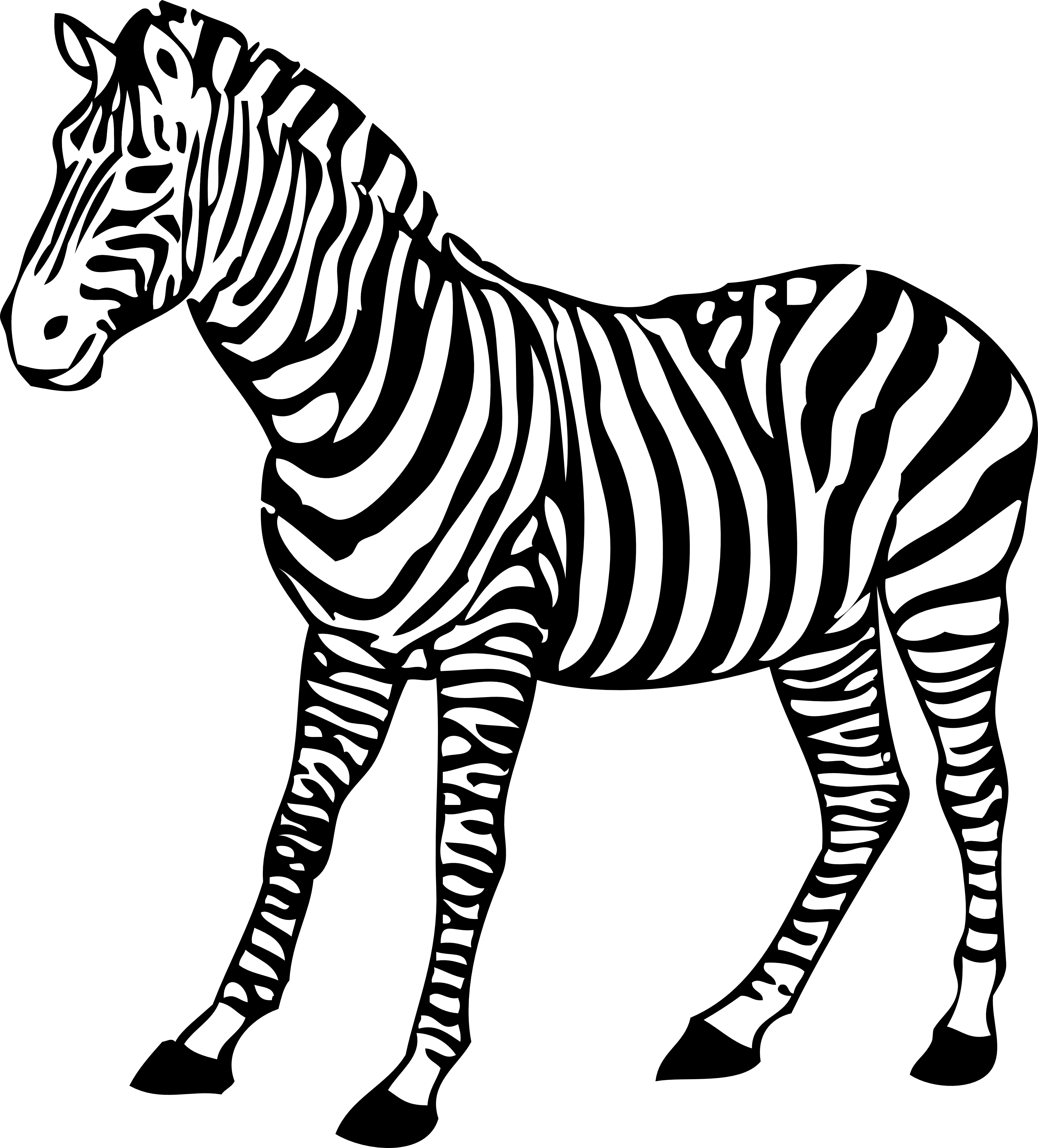 Download Free Zebra