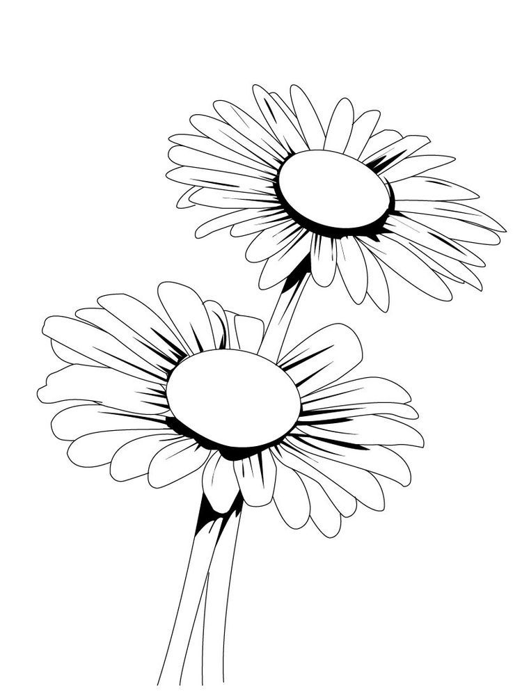 44++ Daisy coloring pages for adults info