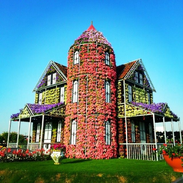 Miracle Garden Dubai City Garden Dds Pinterest Gardens Flowers And Amazing Gardens