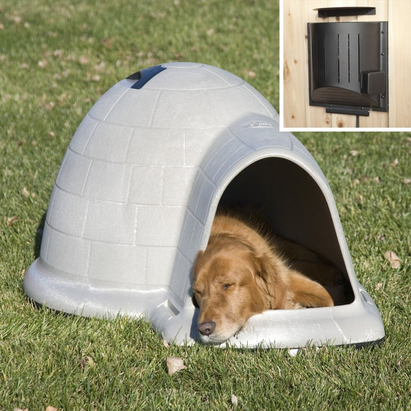 Small Igloo Dog Houses Lowes Paint Colors Interior Check More At