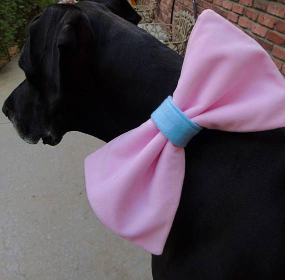 This Item Is Unavailable Etsy Dog Bows Dog Bowtie Bow Tie Baby Shower