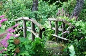 miniature garden ideas - Bing Images