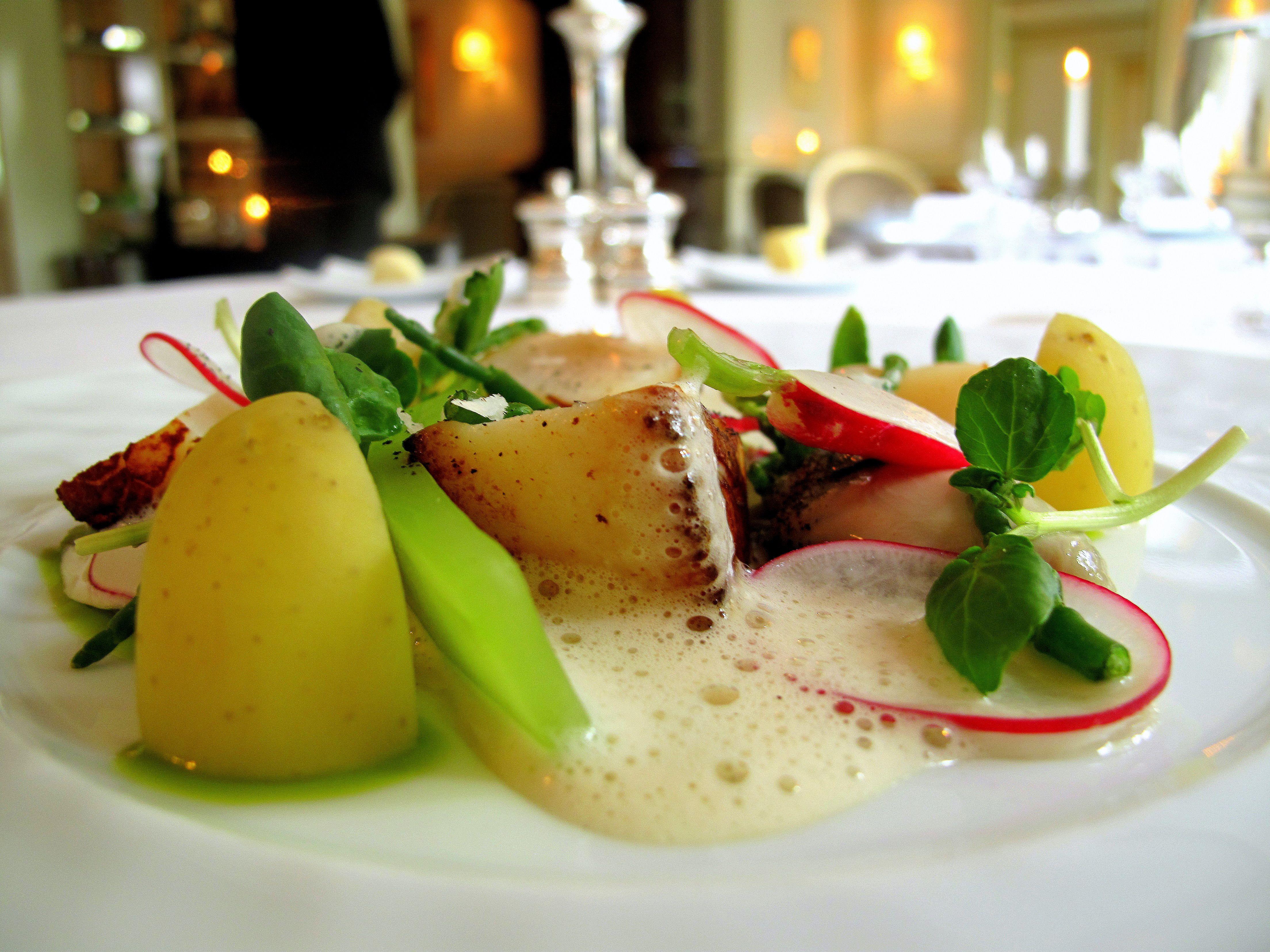 Fine Dining Food Presentation | Go Back > Pix For > Gourmet Food  Presentation
