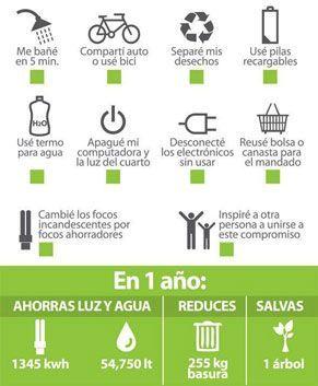 Frases Para Cuidar El Medio Ambiente En El Colegio Buscar