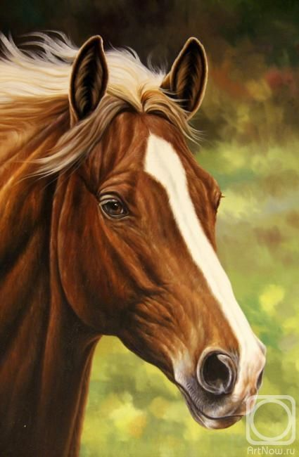 Теверин Сара. Конь