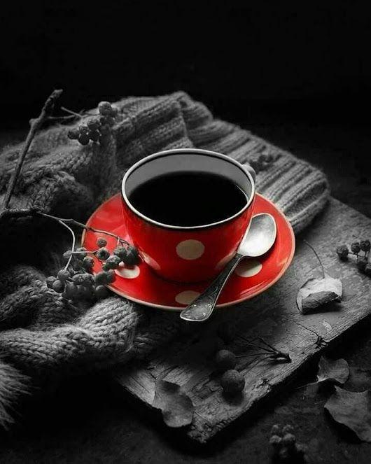 guten morgen  ☕ liebe freunde 🌞 ich wünsche euch allen einen wunderschönen t...