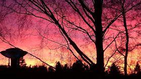 Elämää hopealautaselta: Täydellinen auringonlasku