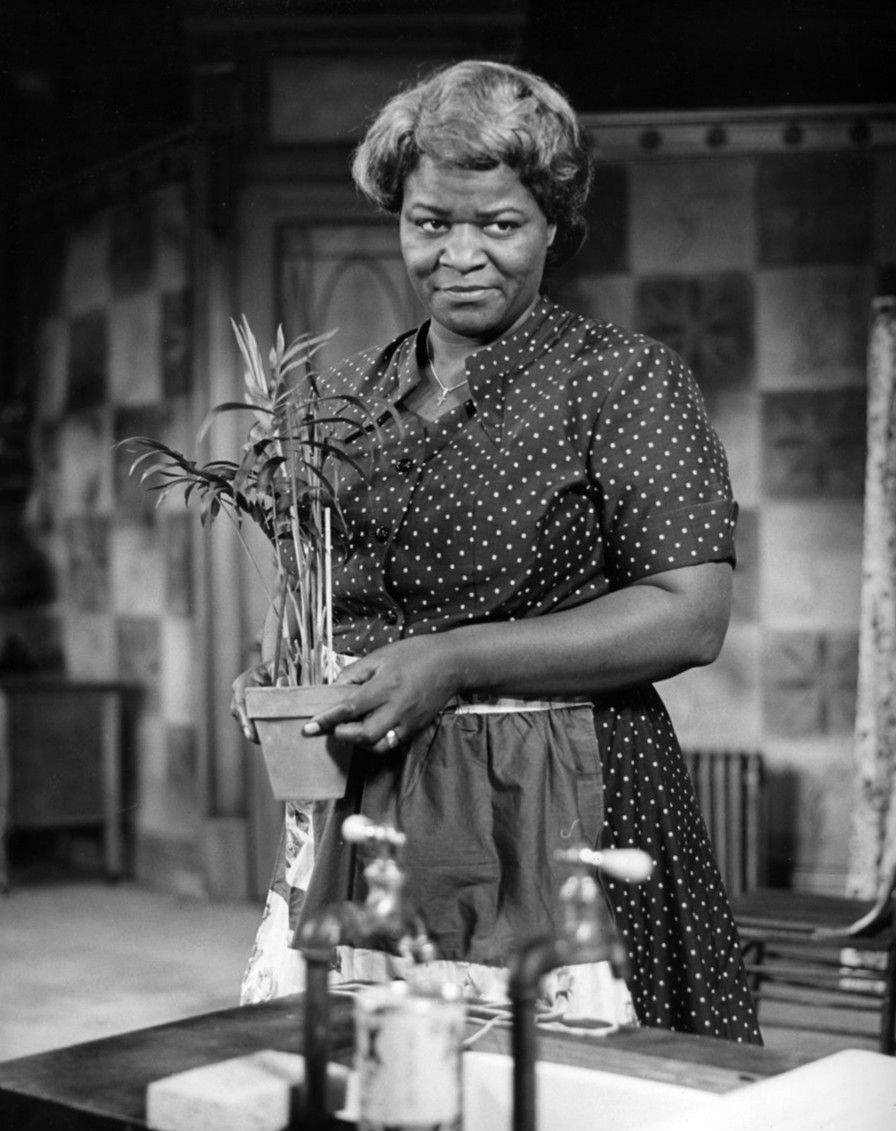 a raisin in the sun the american dream A raisin in the sun is considered the seminal work of playwright lorraine hansberry, although it was initially considered a risky investment, with its focus on black life and there was concern as to whether african american life issues could be considered universal fast forward 59 years.