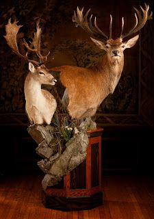 Hunting Man Cave Ideas Country
