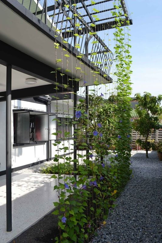 Steel Cables For Creepers Garden House Tetawowe Atelier Lodrette Haver Gron Arkitektur Lodret Have