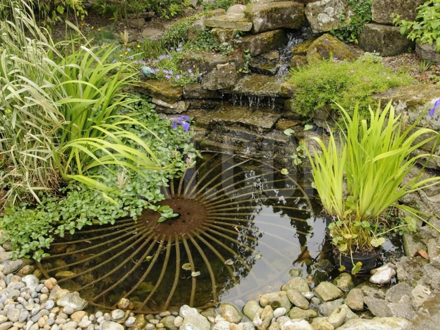 Small Garden Pond with Rustic Wheel Feature and Waterfall ...
