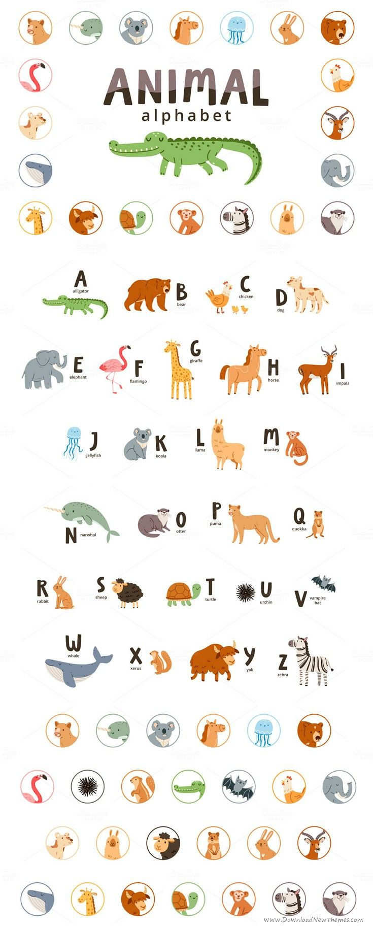 Animal Alphabet Animal Alphabet Alphabet Childrens Illustrations