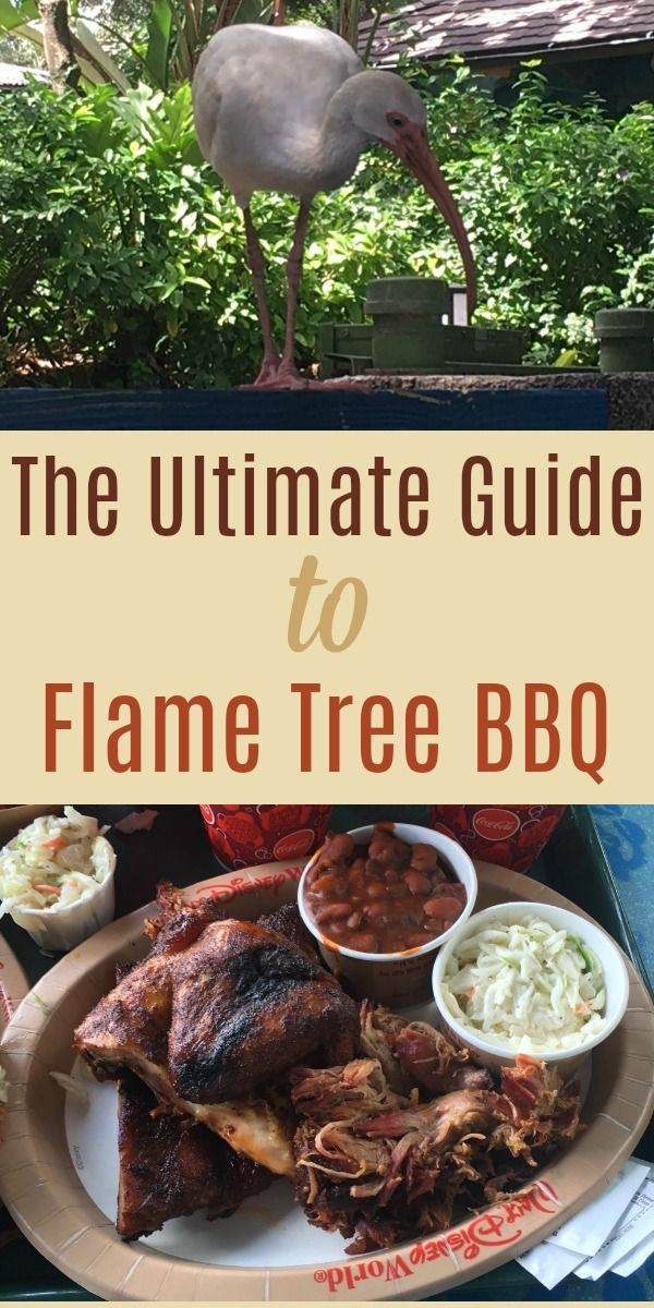 Review Of Flame Tree Bbq At Animal Kingdom Disney Overload