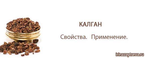 Калган. Полезные и лечебные свойства, применение, Корень калгана | Блог Ирины Зайцевой