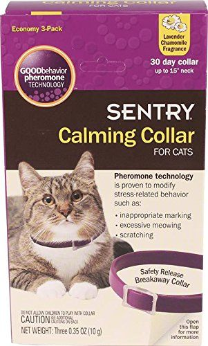 Frontline Gold For Cats 3 Month You Can Find More Details By Visiting The Image Link This Is An Affiliate Link And I With Images Frontline For Cats Cat Fleas Fleas