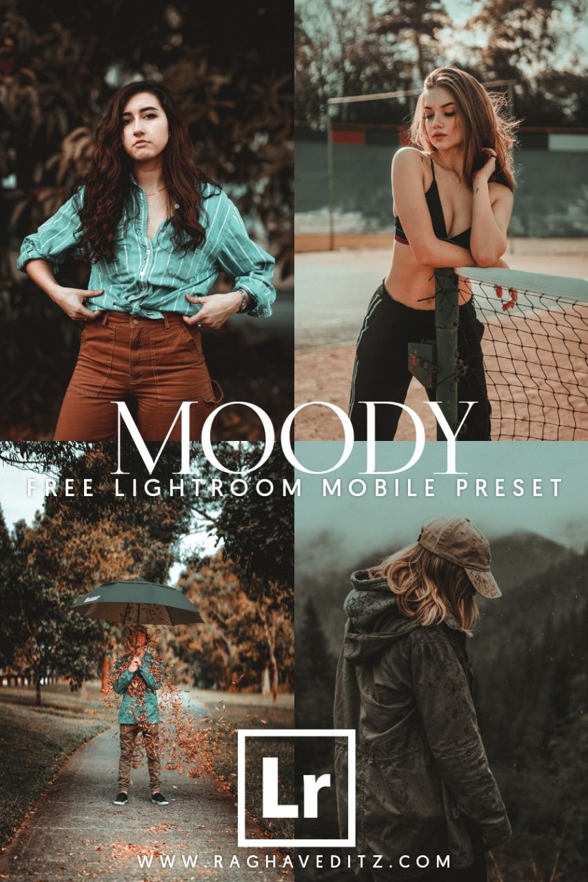Free Moody Lightroom Mobile Preset Adobe Lightroom Preset Lightroom Presets Portrait Lightroom Presets Free Free Lightroom Presets Portraits