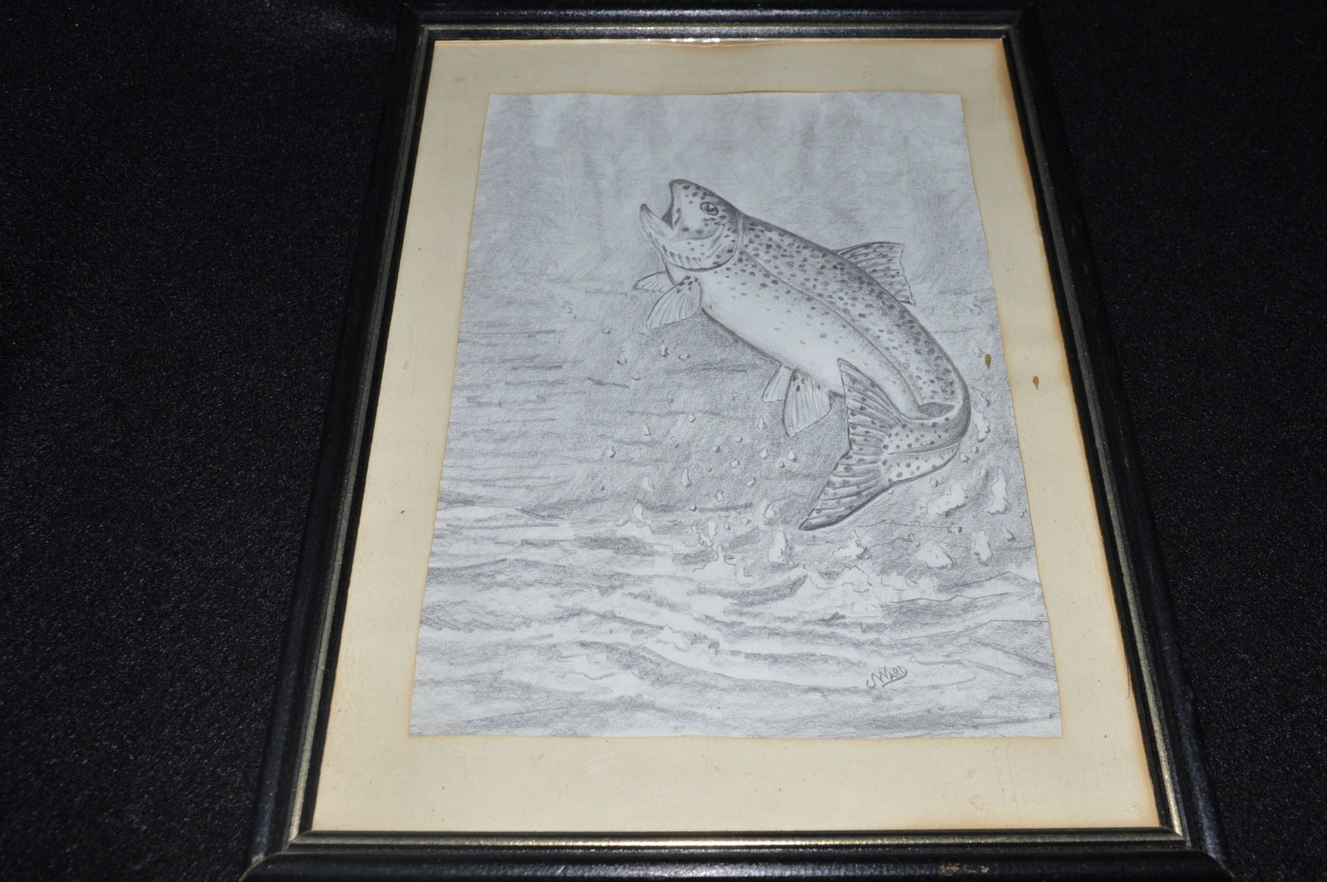 Jumping Trout Fish Drawing, Framed Print Jumping Fish, Rainbow Trout ...