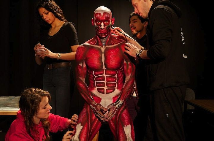 Students Learn Anatomy By Painting A Live Body Science Pinterest