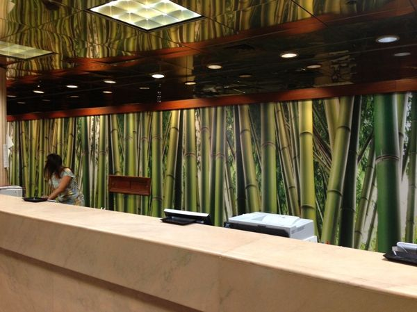 Bamboo Serenity Mural With Images Hotel Lobby Design Lobby Design Murals Your Way