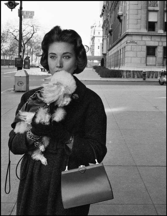 Mrs. O. Kaletsch promenades her miniature poodle in the upper residential area of Fifth Avenue. New York, 1958.  By Inge Morath